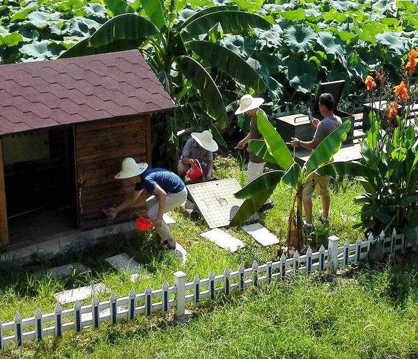 四川峨眉山农村人居生活改善污水处理项目