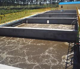 湖北郧西县副食加工厂污水处理项目