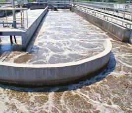 湖北省竹溪县水产养殖厂污水处理项目