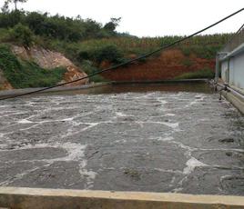 江苏盐城鹌鹑养殖场污水处理项目