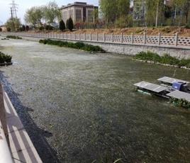 江西南昌河流黑臭水处理项目