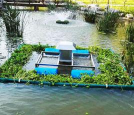 湖北武汉河流黑臭水处理项目