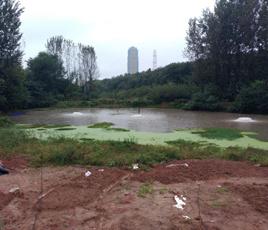湖南长沙河流黑臭水处理项目