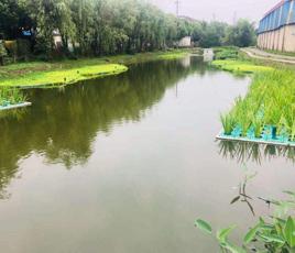 山东青岛河流黑臭水处理工程